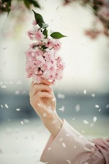 Main de femme avec une branche de sakura parmi les pétales