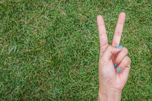 Main de femme brandissant le signe de la paix ou numéro deux avec deux doigts sur l'herbe verte