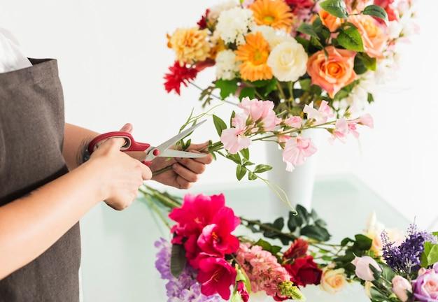 Main de femme coupe une tige de fleur avec des ciseaux