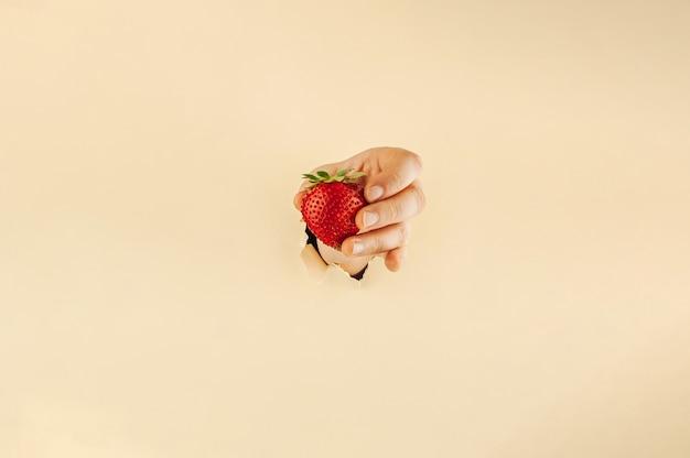 La main de la femme sur fond de papier beige déchiré contient des fraises mûres