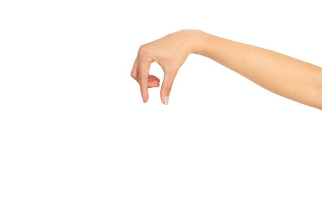Main de femme avec le geste de tenir quelque chose de petit sur un fond blanc avec copie espace