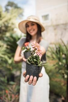 Main de femme heureuse sur plante en pot de fleur rose