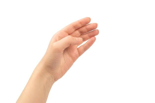 Main de femme isolée sur blanc.