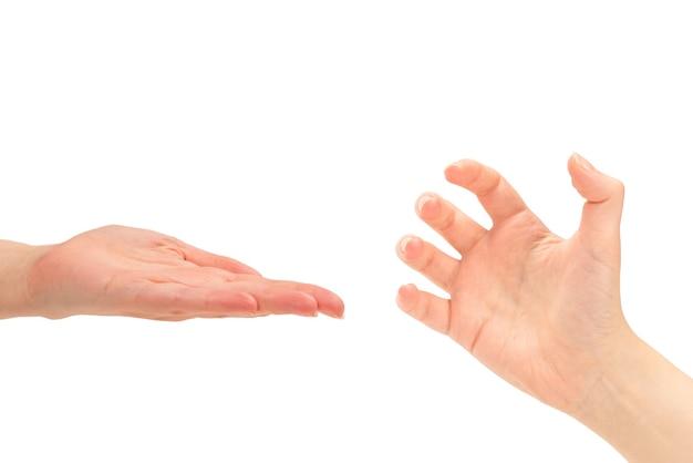 Main de femme isolée sur fond blanc.