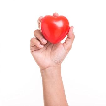 Main de femme tenant un coeur rouge isolé sur blanc