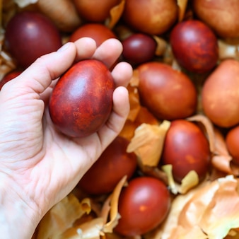 La main de la femme tient des coques d'oignon peintes oeuf de pâques