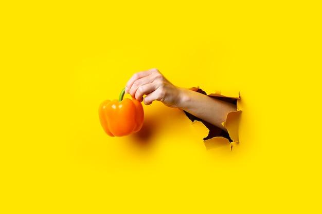 La main d'une femme tient un poivron jaune entier dans un fond de carton jaune déchiré