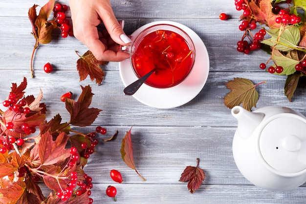 Une main de femme tient une tasse de thé chaud avec une viburnum sur un fond en bois gris