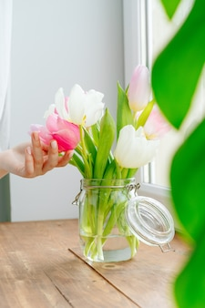 Main de femme touchant les bourgeons de tulipes dans un vase sur le rebord de la fenêtre