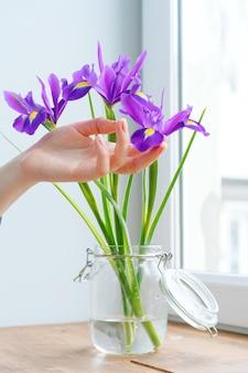 Main de femme touchant les iris dans un vase sur le rebord de la fenêtre