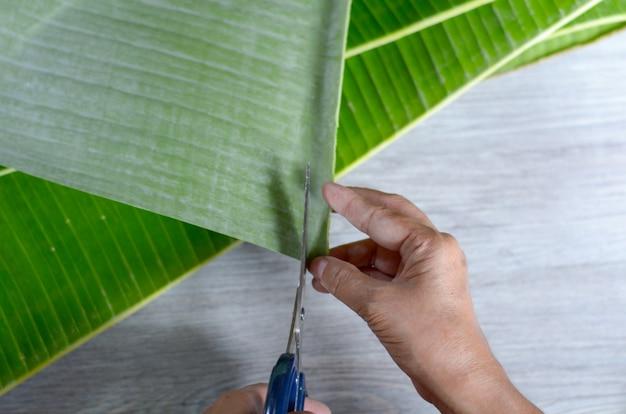 Main sur la feuille de bananier