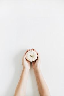 Main de filles tenant une citrouille blanche sur fond blanc. mise à plat, vue de dessus