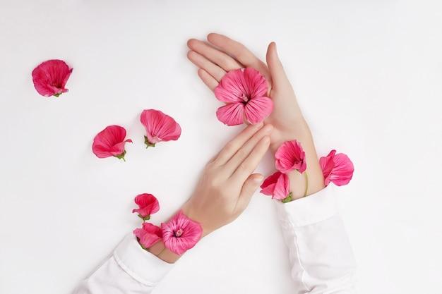 Main et fleur rose sur la table