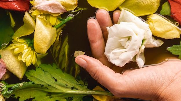Main grand angle tenant une fleur délicate