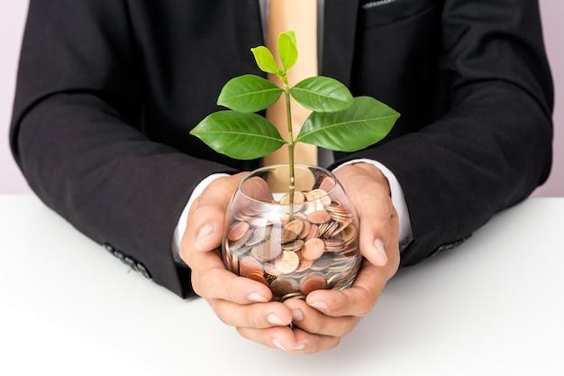 Main d'homme d'affaires mettant les pièces de monnaie et plante sur le verre, concept d'économiser de l'argent pour la finance acco