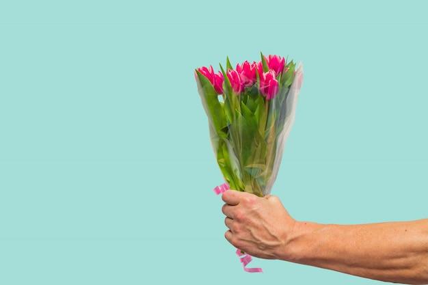 Main d'homme avec bouquet de tulipes roses sur fond bleu. printemps. concept de fête de la femme et de la mère.