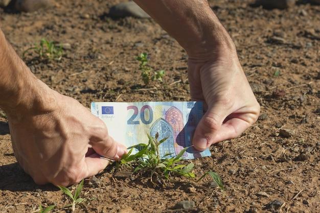 Main de l'homme plaçant un billet de vingt euros dans le sol par une petite plante verte concept d'investissement foncier