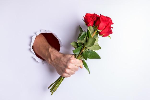 La main de l'homme serre fermement le bouquet de roses rouges, le tenant à travers le trou déchiré dans le mur de papier blanc.