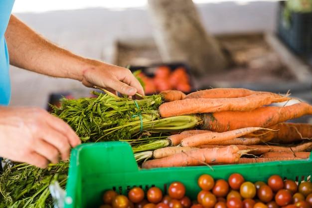 Main d'homme tenant un bouquet de carottes au marché