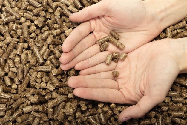 Main humaine tenant des granulés de bois solides