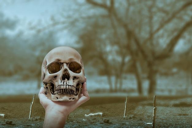 Main levée du sol et tenant un crâne humain