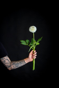 Main masculine avec fleur de dahlia fragile blanc isolé