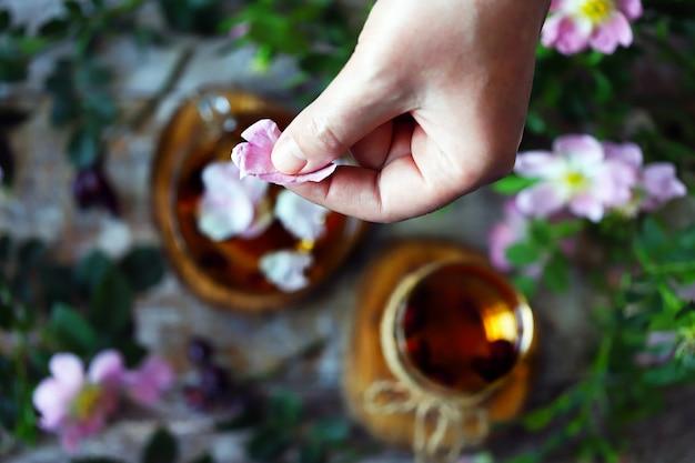 Main met des pétales de rose dans une tasse de thé. thé aux pétales de rose. fleurs et branches d'églantier.