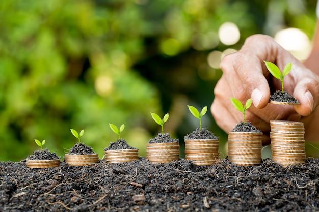 Main mettant la pièce sur la pile de pièces de plus en plus graphique avec fond vert bokeh, concept d'investissement.arbre poussant sur la pièce de monnaie, business finance et économiser de l'argent concept