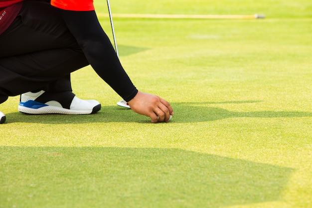 Main, mettre, balle golf, tee, dans, terrain golf