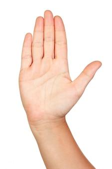 Main ouverte isolé sur fond blanc