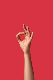 Main de personne fluide de genre isolée sur rouge