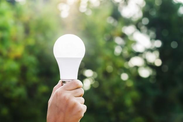 Main tenant l'ampoule led sur fond de nature verte et soleil. concept eco