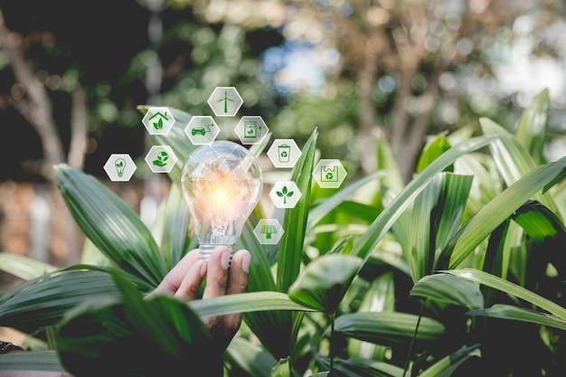 Main tenant l'ampoule avec des sources d'énergie d'icônes pour les énergies renouvelables, naturelles et aime le concept du monde.