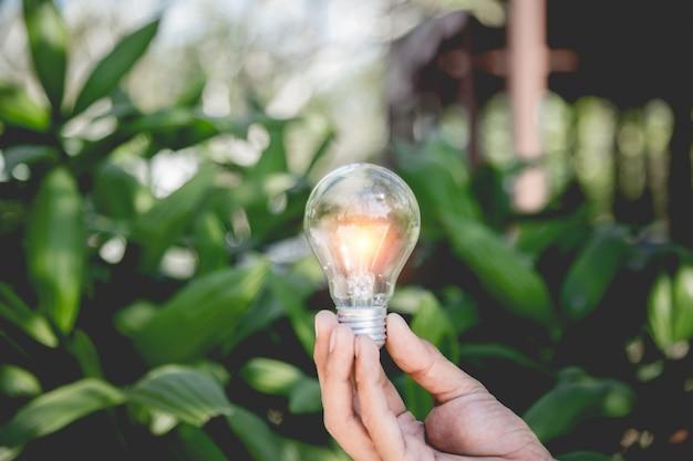 Main Tenant L'ampoule, Les Sources D'énergie Pour Les énergies Renouvelables Et Naturelles Et Aime Le Concept Du Monde. Photo Premium