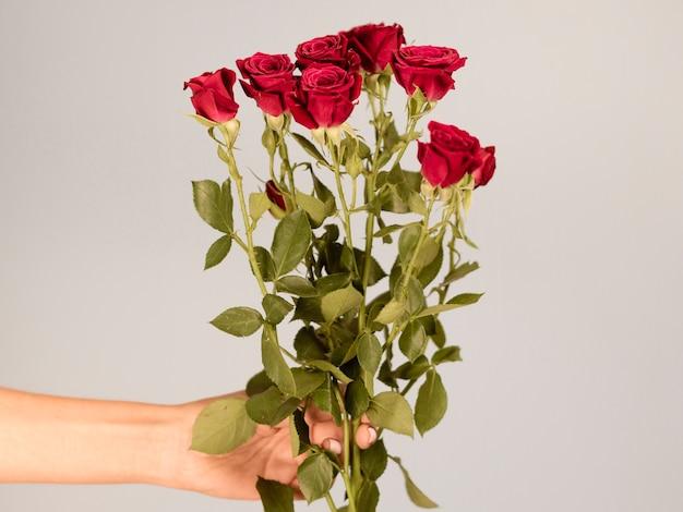 Main tenant le bouquet de roses vue de face