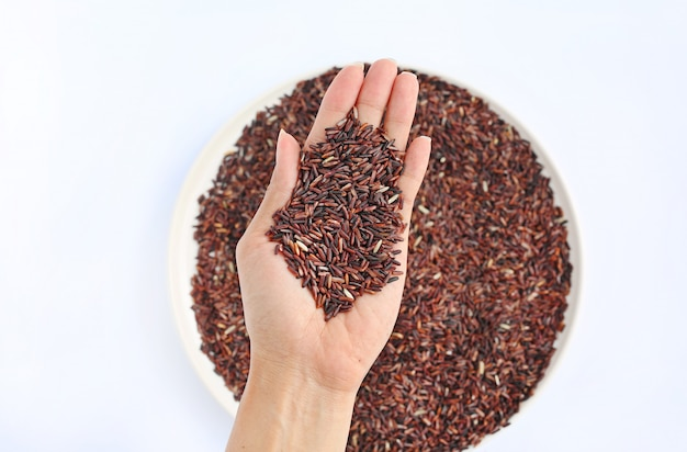 Main tenant du riz au jasmin rouge sur une plaque blanche sur fond blanc