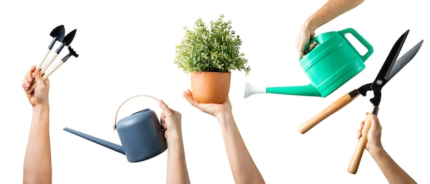 Main Tenant L'ensemble D'outils De Jardinage Pour Votre Conception. Mains De Femme Avec Plusieurs équipements Isolés. Photo Premium