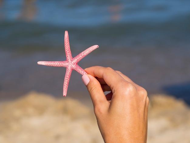 Main tenant une étoile de mer avec un arrière-plan flou