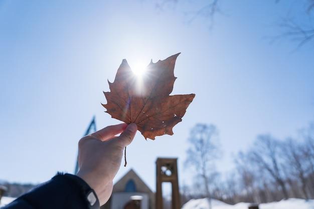 Main tenant la feuille d'érable séchée avec l'impact de la lumière du soleil sur elle et fond de ciel bleu.