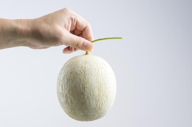 Main tenant le melon cantaloup