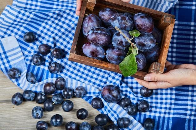Main tenant un panier en bois de prunes de jardin sur table en bois.