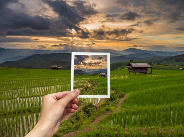 Main tenant photo instantanée et vue sur le coucher du soleil au riz.
