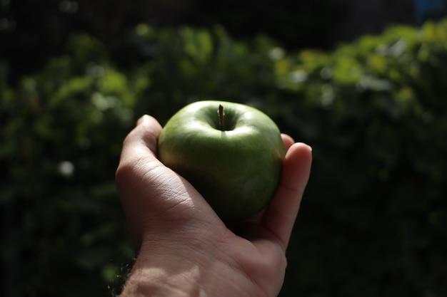 Main tenant la pomme verte avec la nature floue de fond vert