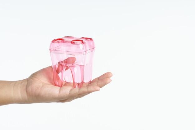 Main tenant un récipient en forme de dents pour porte-brosse à dents