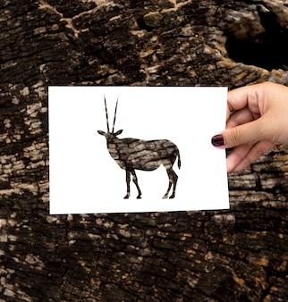 Main tenant la sculpture sur papier gemsbok oryx