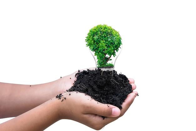 Main tenant un sol noir et une lampe ou une ampoule cassée avec une petite plante à l'intérieur, idée pour l'environnement et la sécurité de la nature isolée sur fond blanc