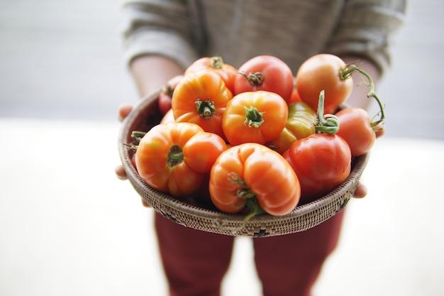 Main tenant des tomates rouges crues fraîches dans un panier en osier
