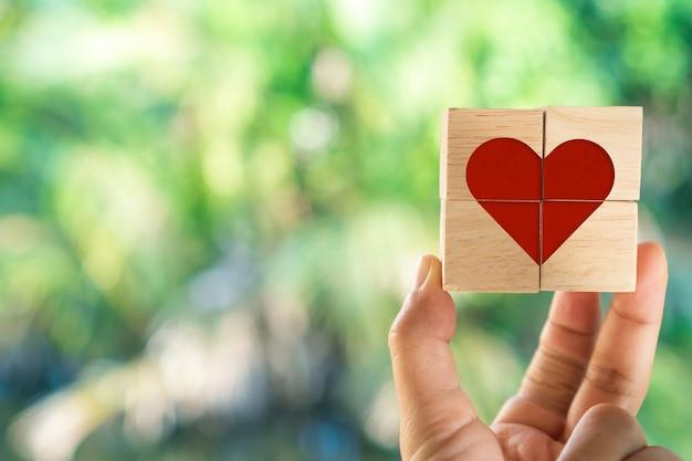 Main tenir le cube en bois avec l'icône de signe de coeur et copier la lumière du soleil de la nature de l'espace, vous pouvez mettre du texte sur l'arrière-plan. concept de saison d'amour de la saint-valentin.