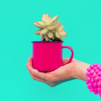 La main tient un mini cactus. bonbons concept art créatif minimal