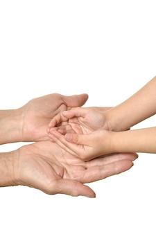 Mains adultes tenant des mains d'enfant sur un fond blanc